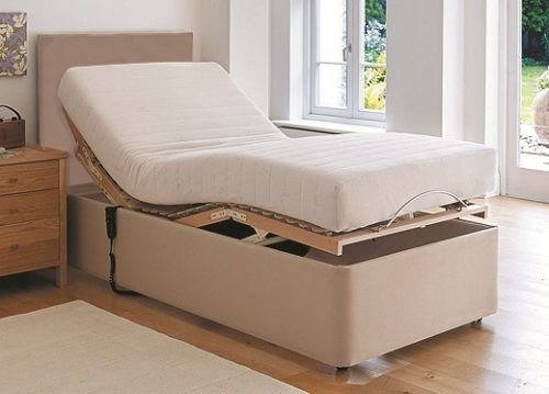 sleepkings electric adjustable bed